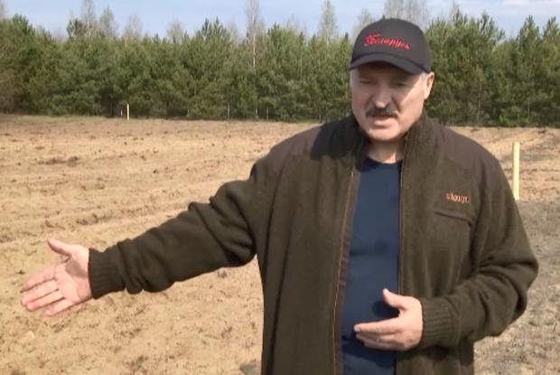 Вещь недели: Кардиган за 300 евро, в котором Лукашенко сажал деревья