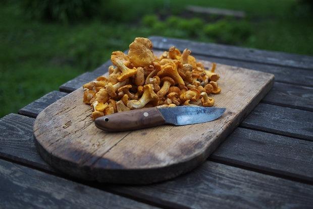 Сезон лисичек: 8 интересных блюд из главных летних грибов, которые легко приготовить дома — Рэцэпты кухараў на The Village Беларусь
