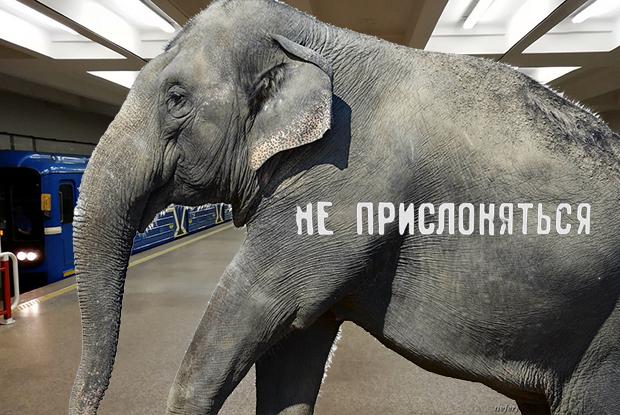 НЕ ПРИСЛОНЯТЬСЯ: Что будет, если машинист метро случайно откроет двери во время движения? — Ёсць пытанне на The Village Беларусь