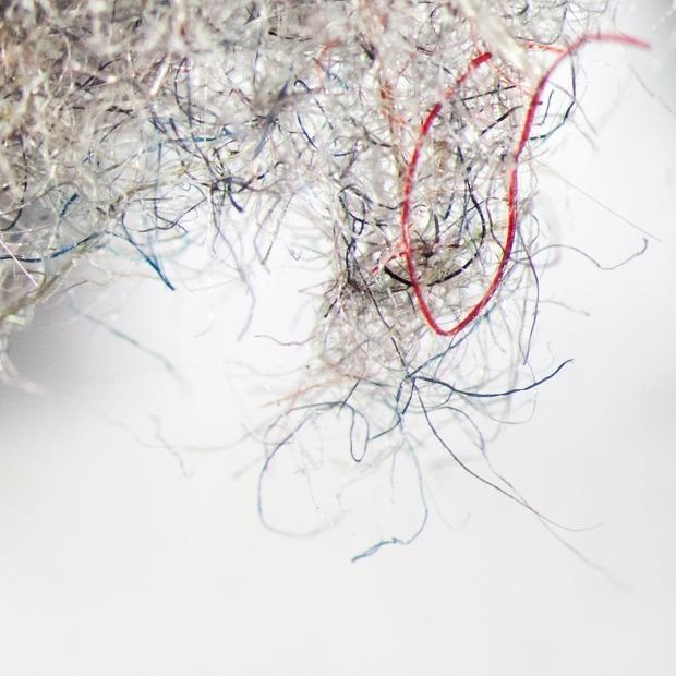 Як выглядае ваш хатні пыл пад мікраскопам: Алергікі, сцеражыцеся