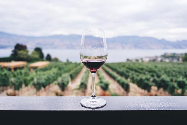 А судьи кто?: Топ-10 беларусов, которые оценивают и комментируют вино в знаменитом приложении Vivino — Гiд The Village на The Village Беларусь