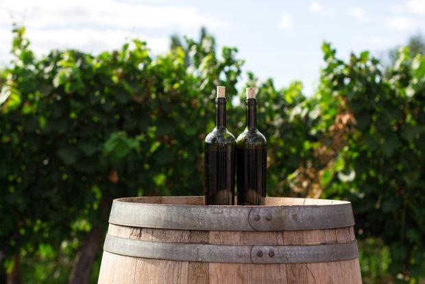 Что такое квеври: Краткий гид по грузинскому вину — Гiд The Village на The Village Беларусь