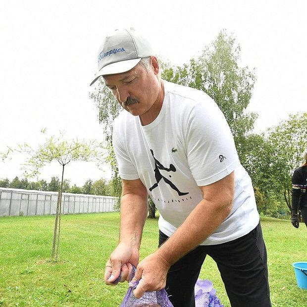 Вещь недели: Футболка за 50 долларов, в которой Александр Лукашенко собирал картошку — Рэчы тыдня на The Village Беларусь