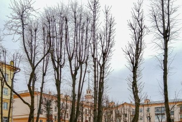 Попятьсотск и Саша: После переименования Астаны беларусы предлагают варианты для Минска