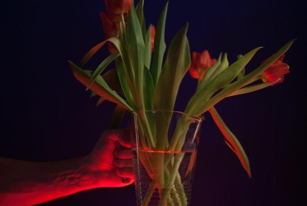 Сколько стоят одни и те же тюльпаны в переходе и в модных цветочных магазинах накануне 8 Марта