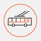 Шорец поручил создать выделенные полосы для автобусов и троллейбусов