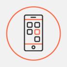 Мастера из ЖЭСа теперь можно вызвать через мобильное приложение