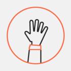 Платформа «Голос» запускает проект #ягуляю: Чтобы сосчитать всех пришедших на митинги