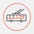 На проспекте Дзержинского столб упал на троллейбусные провода