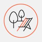 В Лошицком парке можно бесплатно заниматься хатха-йогой до конца лета
