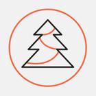 Дизайнеры от «Синьки» сделали новогоднюю елку из тюков соломы