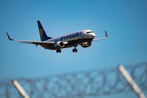«Информация от инсайдеров»: Авиакомпании рассказали, что думают о прекращении полетов над Беларусью