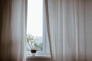 «Дома всегда должно быть открыто хотя бы одно окно»: Почему необходимо проветривать чаще