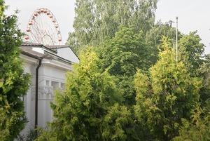 «Можно по шуму определить, в каком посольстве сегодня тусовка»: Я живу напротив Дипсервис Холл