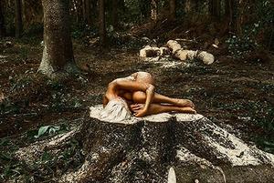 Нагое тело против короеда: как связана вырубка леса и голые девушки?