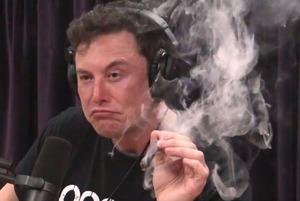 «Скажи, Илон, перестать ли жрать перед сном?»: Пользователи Twitter начали спрашивать советы у Маска