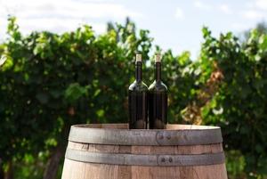 Что такое квеври: Краткий гид по грузинскому вину
